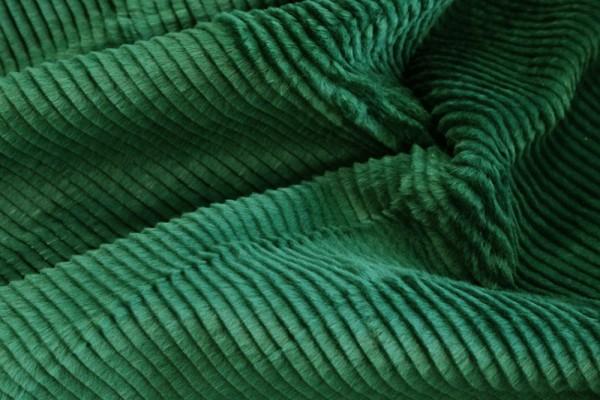 Verde Solera Canon 8mm